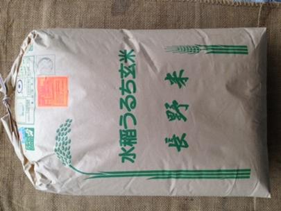 特別栽培米 28年信州あづみの産こしひかり5kg≪送料無料≫